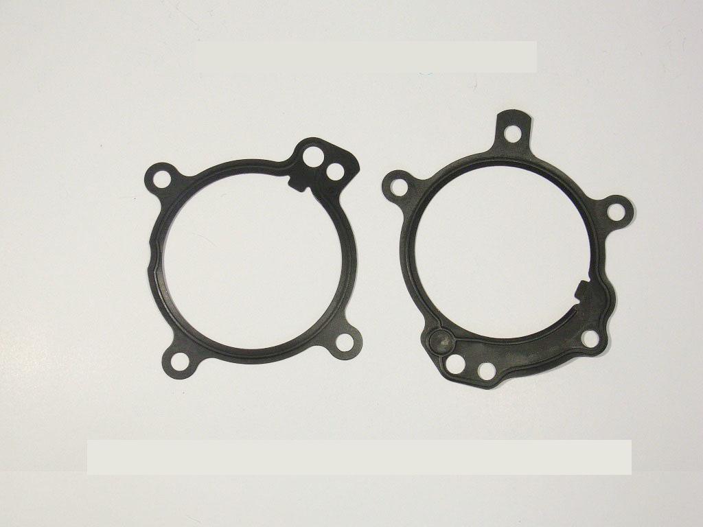 bmw dual vanos o ring seal repair kit plus anti rattle kit. Black Bedroom Furniture Sets. Home Design Ideas